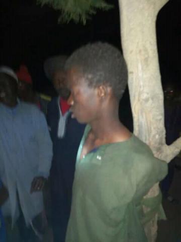 صورة احد اللصوص بعد اعتقله الاهالي وربطوه بجذع شجرة